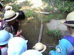 るり渓一泊園外学習7